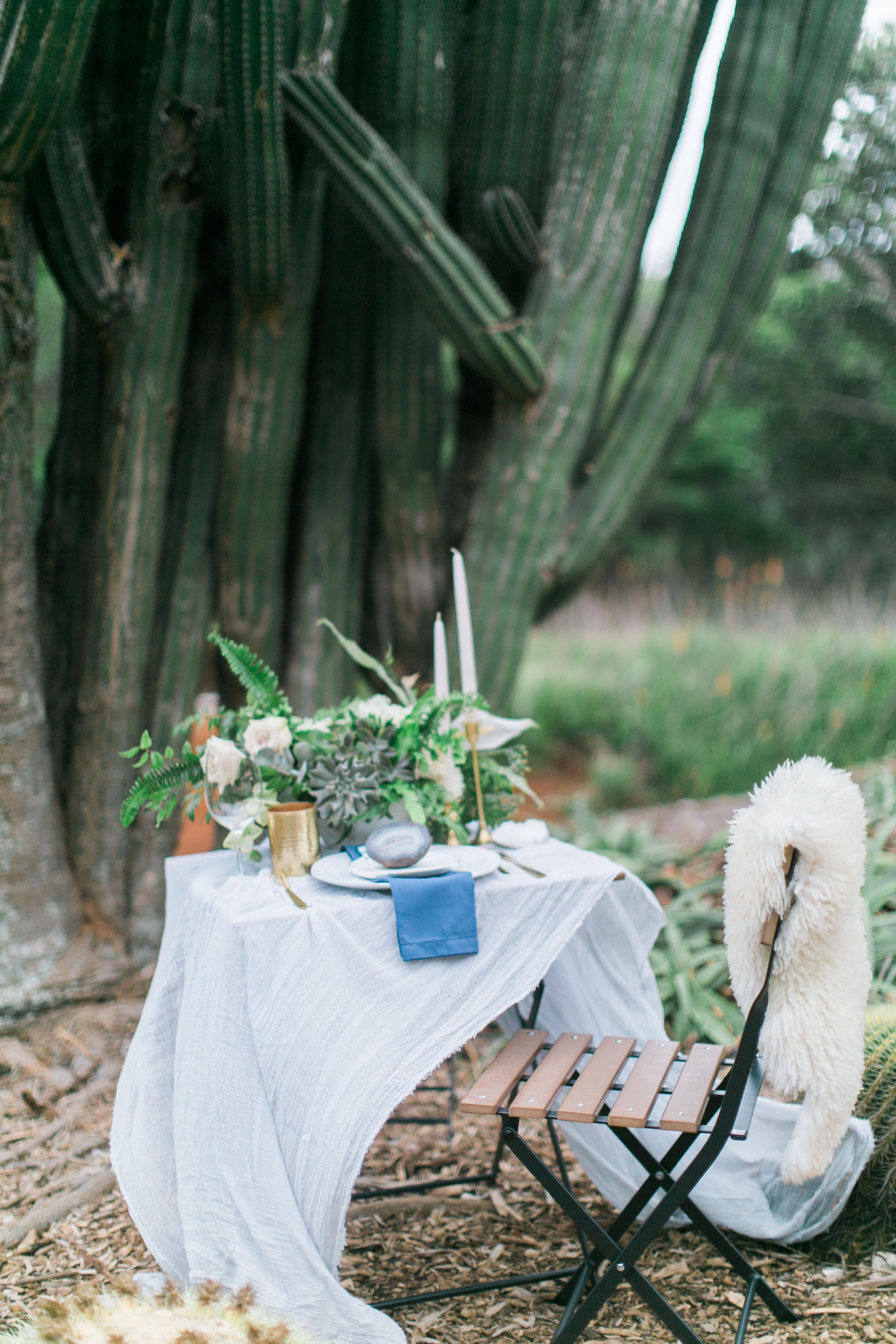 Koko Crater Styled Shoot (12 of 345)
